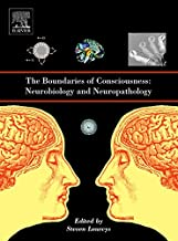 The Boundaries of Consciousness: Neurobiology and Neuropathology (Progress in Brain Research)
