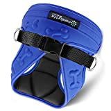 metric usa Comfort Fit Pets # 1 Rated Small Dog Harnesses Our small dog harness vest has padded interior and exterior cushioning ensuring your dog is snug and Take off! - Blue - XS