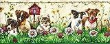 Sanitas Puppies & Kittens Wallpaper Border CK062173B