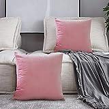 SPECOOL 2 Piezas Fundas Cojines de Terciopelo 45x45cm Fundas de Almohada Decoración con Cremallera Invisible para Sala de Estar, sofá, Dormitorio o Coche (Pink)