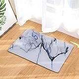 Nunubee Motif de Granit Tapis antidérapant Tapis d'entrée Paillassons Tapis Souples Tapis Terrasse Cuisine Maison Intérieur Extérieur Chambre Tapis 16x24 Pouces - No.2