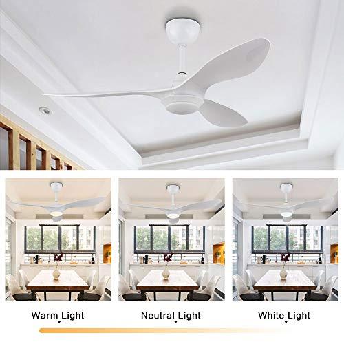 WUPYI2018 Ventiladores de techo