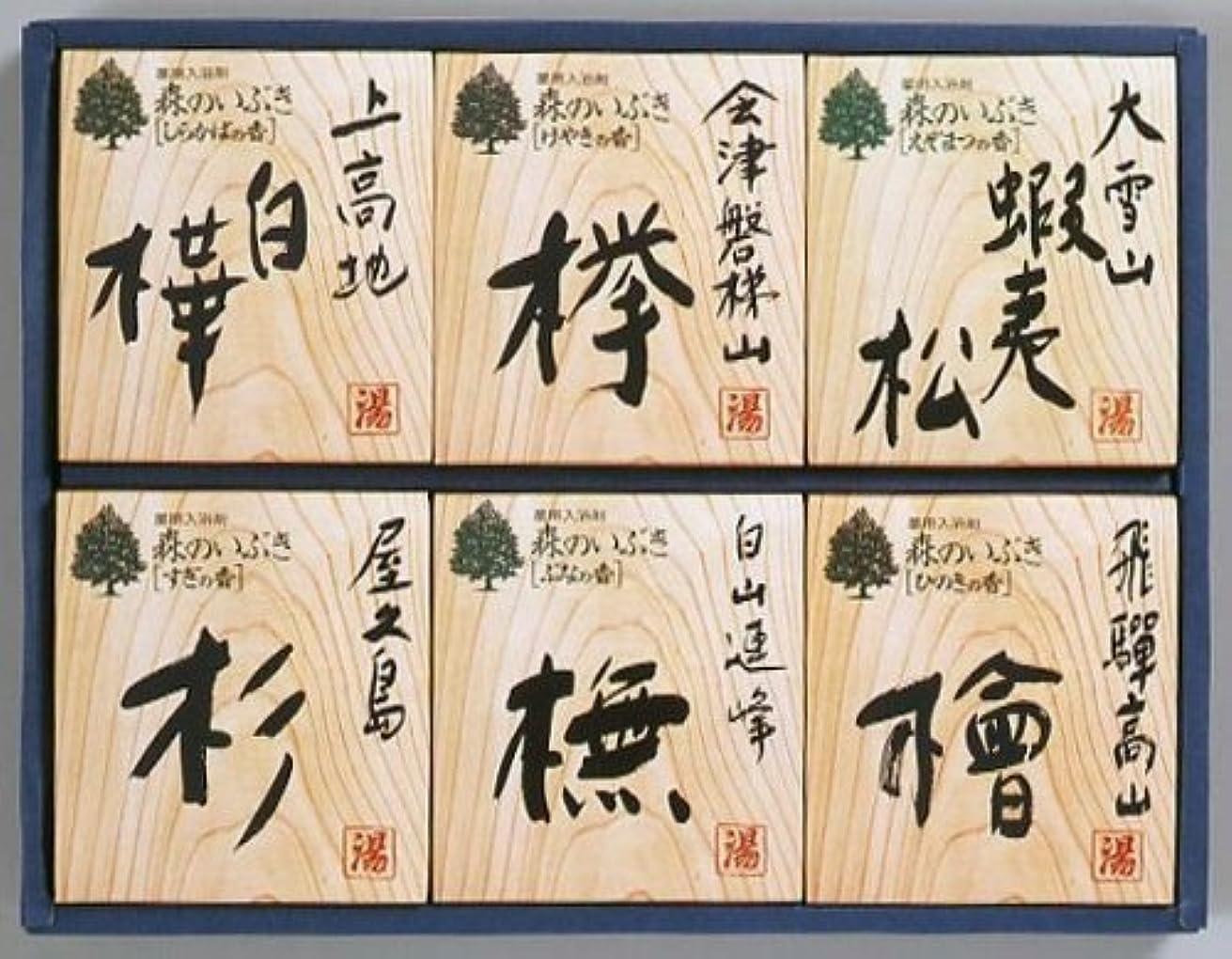 コンデンサーデモンストレーション切る森のいぶきギフトセット HMI20 [医薬部外品]
