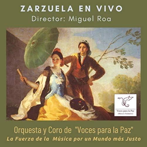Orquesta y Coro de Voces para la Paz & Miguel Roa