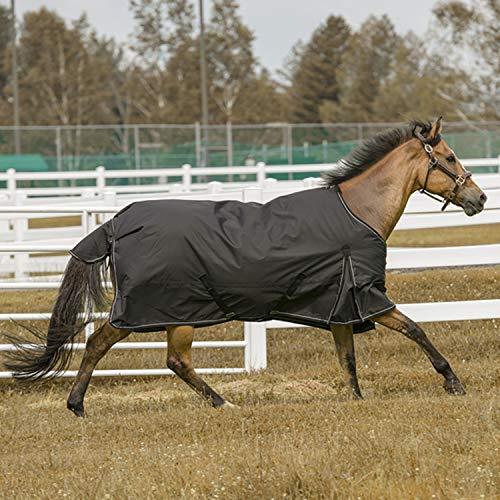 TuffRider 600 D Comfy Winter Blanket Black