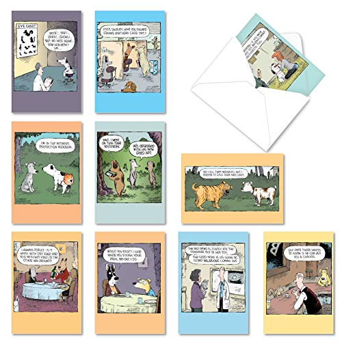 NobleWorks - 10 Assorted Happy Birthday Cards - Funny Bday Greeting Cards with Cartoons, Bulk Boxed Notecard Set - Dog Days A2665BDG