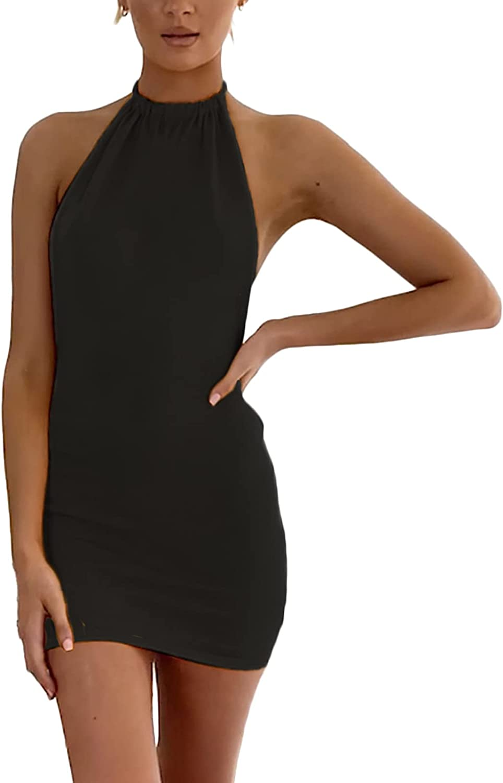 Women's Mini Dress Knitted Backless Halter Sleeveless Shinny Club Party Holiday Beach Bodycon Dress
