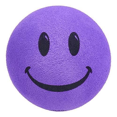 HappyBalls Happy Smiley Face Head Car Antenna Topper/Antenna Ball/Auto Mirror Dangler/Desktop Bobble Buddy (Purple)