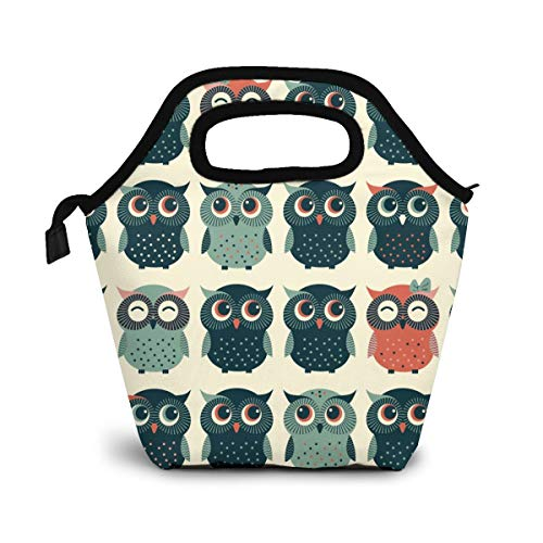 Reusable Lunch Bag,Cute Owl Lunch Bag Picnic Office Outdoor Thermal Carrying Gourmet Lunchbox Cartoon Animal Pattern Lunch Tote Container Tote Cooler Warm Pouch For Men,Women