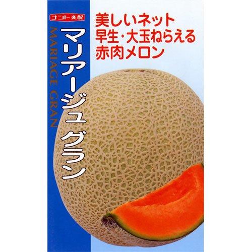 メロン 種 【 マリアージュグラン 】 種子 小袋(約6粒)