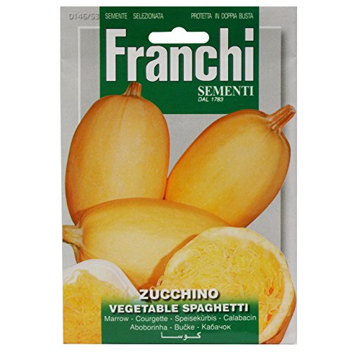 Seeds of Italy Ltd Franchi Courge Spaghetti