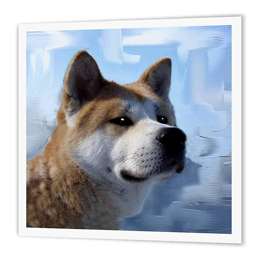 3dRose ht_4171_3 Akita Portrait-Iron on Heat Transfer Paper for White Material, 10 by 10-Inch