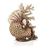 OASE biOrb 48360 Korallen-Muschel Ornament - Aquariendekoration in Form eines Korallenriffs zur stilvollen Einrichtung von biOrb Aquarien, aus pflegeleichtem und langlebigem Kunststoff