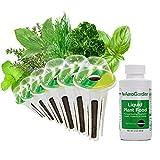 AeroGarden - Kit cápsulas semillas de hierbas aromaticas Gourmet, 6 cápsulas