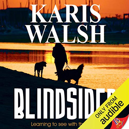 Blindsided cover art
