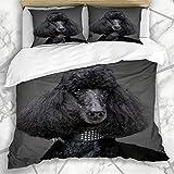 Luancrop Dekorative Bettbezug-Sets Curly Adult Schwarzer Pudel Auf Grau Entzückende Aufmerksame Große Rasse Hundehalsband Schöne Mikrofaser Bettwäsche mit 2 Kissenbezügen