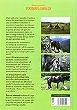 Zoom IMG-1 manuale del turismo a cavallo