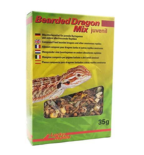 Lucky Reptile - Mezcla de dragón