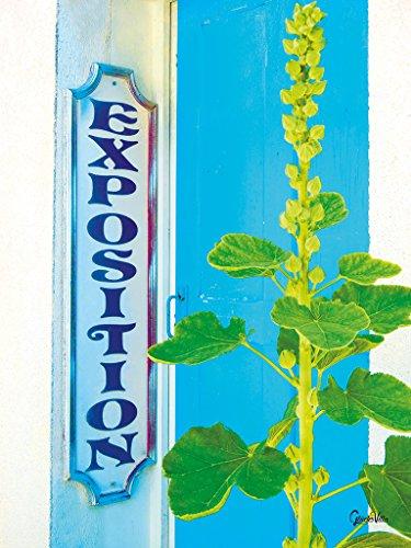Französische Impression 5 - XXL Bild / Wandbild, Größe: 60 x 80 cm Hoch-Format, Digital-Druck auf Art Canvas Leinwand, Keilrahmen 2 cm. Frankreich Malve Stockrose grün weiß blau Bild groß Kunst