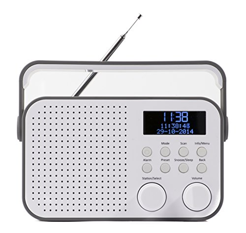 NIKKEI NDB20GY draagbare DAB-radio, digitale radio met DAB en FM, radio met autoscan