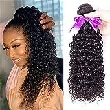 Brazilian Curly Hair 1 Bundles 10 inch Unprocessed Brazilian Kinky Curly Human Hair Bundles Natural Black Color