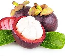 CER0T Egrow 50Pcs/Pack Mangosteen Seeds Tropical Sour Sweet Fruit Seeds Garden Plants Tree Bonsai