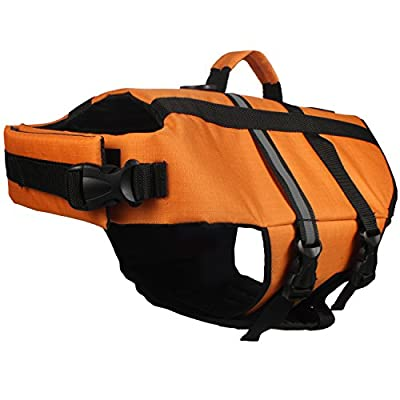 American Kennel Club Flotation Life Vest