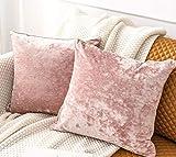 IUYJVR 2 Piezas de Terciopelo de Hielo Blush Pink Rectangular Fundas de cojín para sofá Sofá Silla Fundas de Cojines Decorativos Fundas de Almohada para Sala de Estar Cama Coche-45x45 cm_Rosado