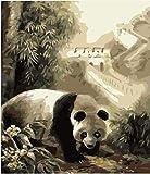 FGHJSF Pintar por numerosPanda Animal Pintura al óleo de DIY por Números con Pinceles y Pinturas para Adultos Niños Principiantes Lienzo Pintura al óleo - 40 X 50 cm (Sin Marco)