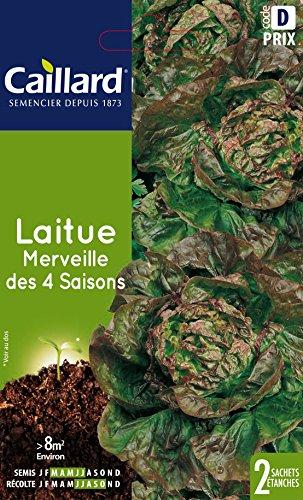 Caillard PFCC13116 Graines de Laitue Merveille des 4 Saisons