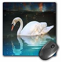 3drose LLC 8x 8x 0.25インチマウスパッド、美しいホワイトスワンと反射( MP _ 62351_ 1)