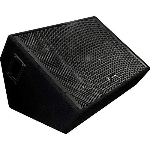 Studiomaster GX Series 15 Zoll Aktives Monitorgehäuse