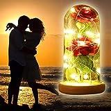 EFGS Rose Kit, rote Seide Rose und LED-Licht mit gefallenen Blütenblättern in Glaskuppel auf Holzsockel für die Geschenke der Hauptdekor-Urlaubsparty-Hochzeitstag-Valentines