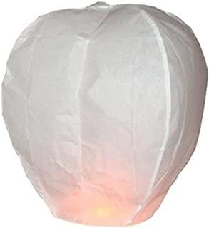 20 PCS Sky Lanterns Paper Lanterns Chinese Wishing Lantern For Birthday Wedding Party (20pcs white)