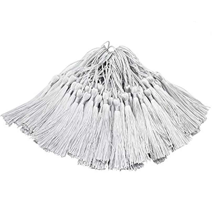 Aokbean 100pcs 5 Inches Handmade Silky Floss Soft Craft Bookmark Tassels with Loops for DIY, Jewelry Making, Graduation Tassel,Bookmarks,Souvenir (Silver)