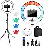 Pixel Ring Light with Stand and Remote Controller,19' Light Ring with Softbox Diffuser and iPad Holder, 60W 3000-5800K CRI≥97 Large Ring Light with 4 Color Filters for YouTube,TikTok Video Shooting