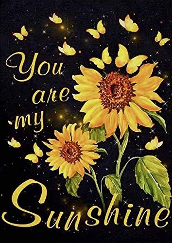 Kit de pintura de diamante 5D para adultos, diseño de girasol, taladro completo, pintura de punto de cruz por números, para decoración de pared del hogar, You are my Sunshine (S30 x 40 cm)