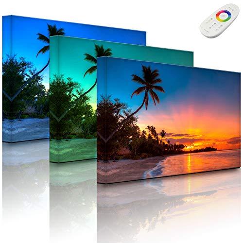 Lightbox-Multicolor | Leuchtbild | Palmen am Strand | 60x40 cm | Fully Lighted