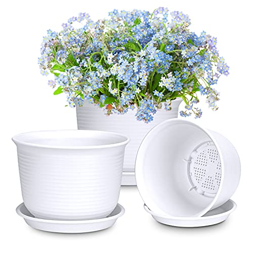 Macetas de plástico con platillo diámetro 21 cm, 3 unidades, color blanco