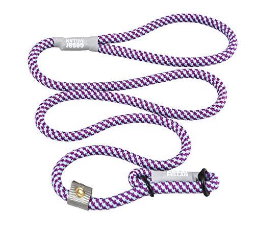 Cesar Millan Leine - Trainingsleine für Hunde - 2in1 Halsband Hund und Leine - Slip Lead - Retrieverleine mit integrierter Halsung - Länge 120cm Durchmesser 1cm Farbe Lila/Aqua