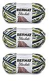 Bulk Buy: Bernat Blanket Yarn (3-Pack) Oceanside 161200-103