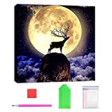 DIY 5D Diamond Painting Kit Full Round Drill DIY Crystals Wall Art for Adults Deer On The Cliff 15.7x15.7in Pack by Tangbr