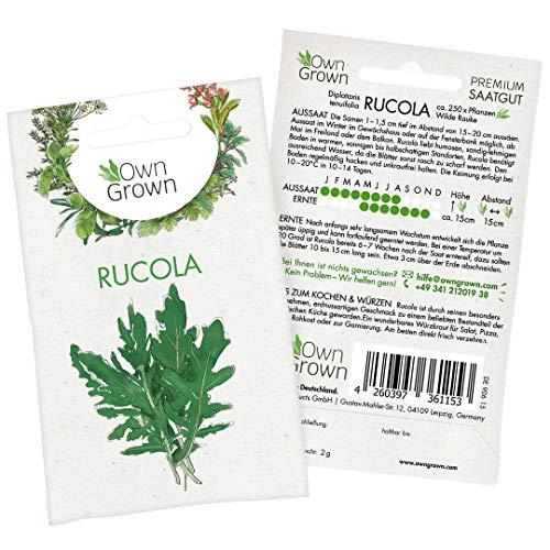 Premium Rucola Samen (Diplotaxis tenuifolia), Rucolasamen zum Anbau im Garten und auf dem Balkon, würzige Wilde Rauke, Salat Saatgut für rund 250 Rucola Pflanzen von OwnGrown