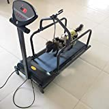 PILIBEIBEI Dog Treadmill, Fitness Pet Treadmill Indoor Exercise, Pet Exercise Equipment, with Display