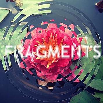 Fragments