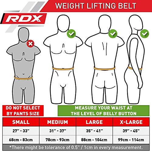 Authentische RDX Gewichtheben Rückengurt Body Building Gym Fitness - 2