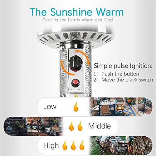 PAMAPIC 46000 BTU Commercial LP Patio Heater with Cover, Bronze