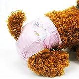 POPETPOP 16Pcs Pañales de Sanitarios para Perras, Pañales de Papel Desechables, Cojines de Menstruales para Pequeñas y Medianas Perras, 22-50cm (S, Color Aleatorio)