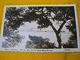 Antigua Postal - Old Postcard : PALMA MALLORCA - Vista parcial desde Hotel Nacional