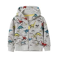 8. Azalquat Cartoon Dinosaur Full Zipper Toddler Hoodie